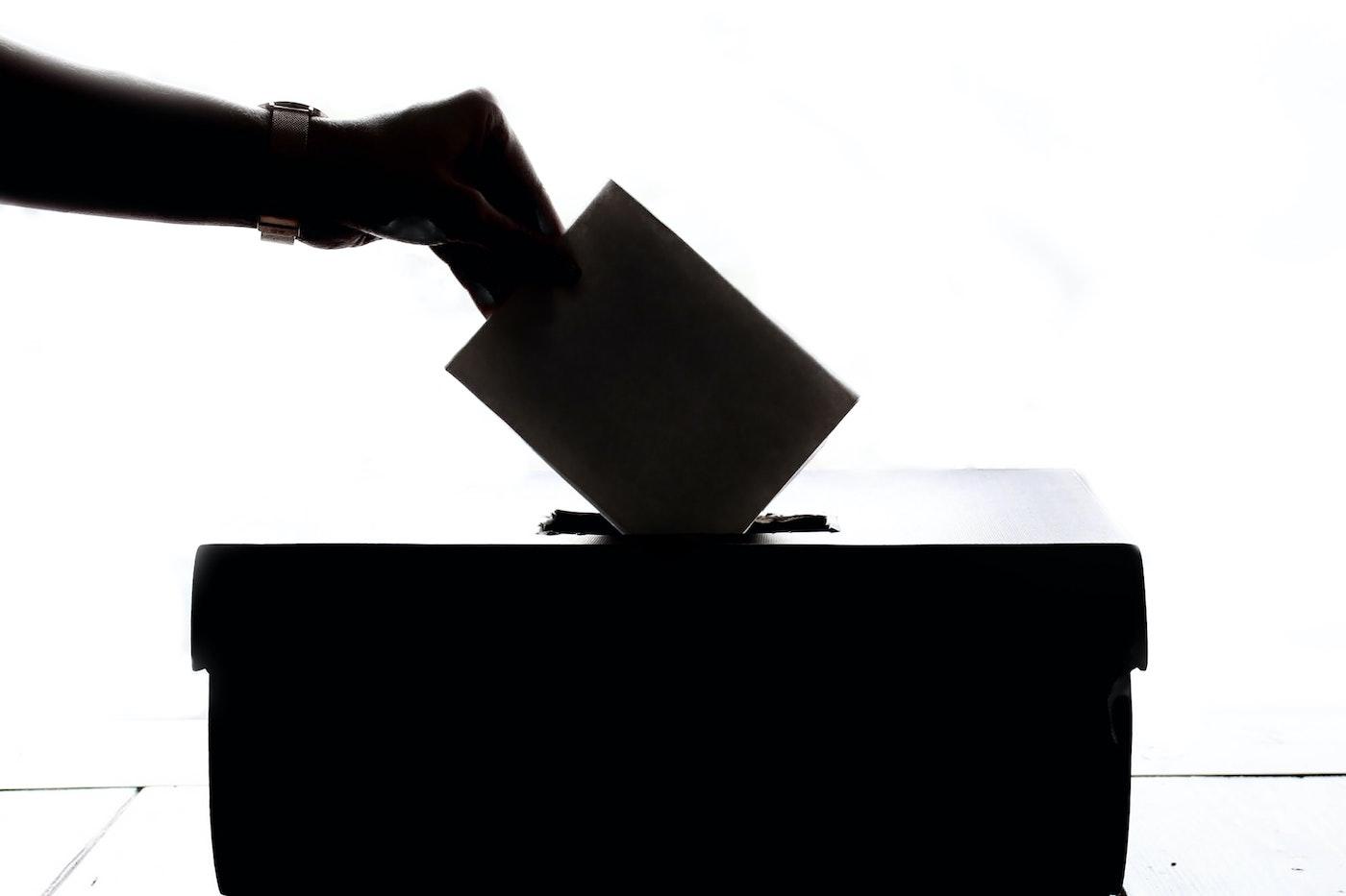 rösta i valen Foto av Element5 Digital